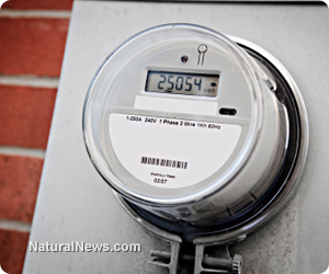 Smart Meter Electricity Energy Home.jpg